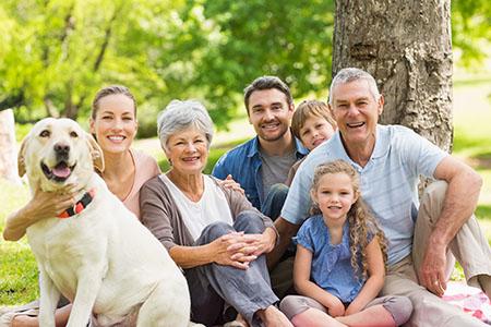 Synergy Migration Parent visas 1